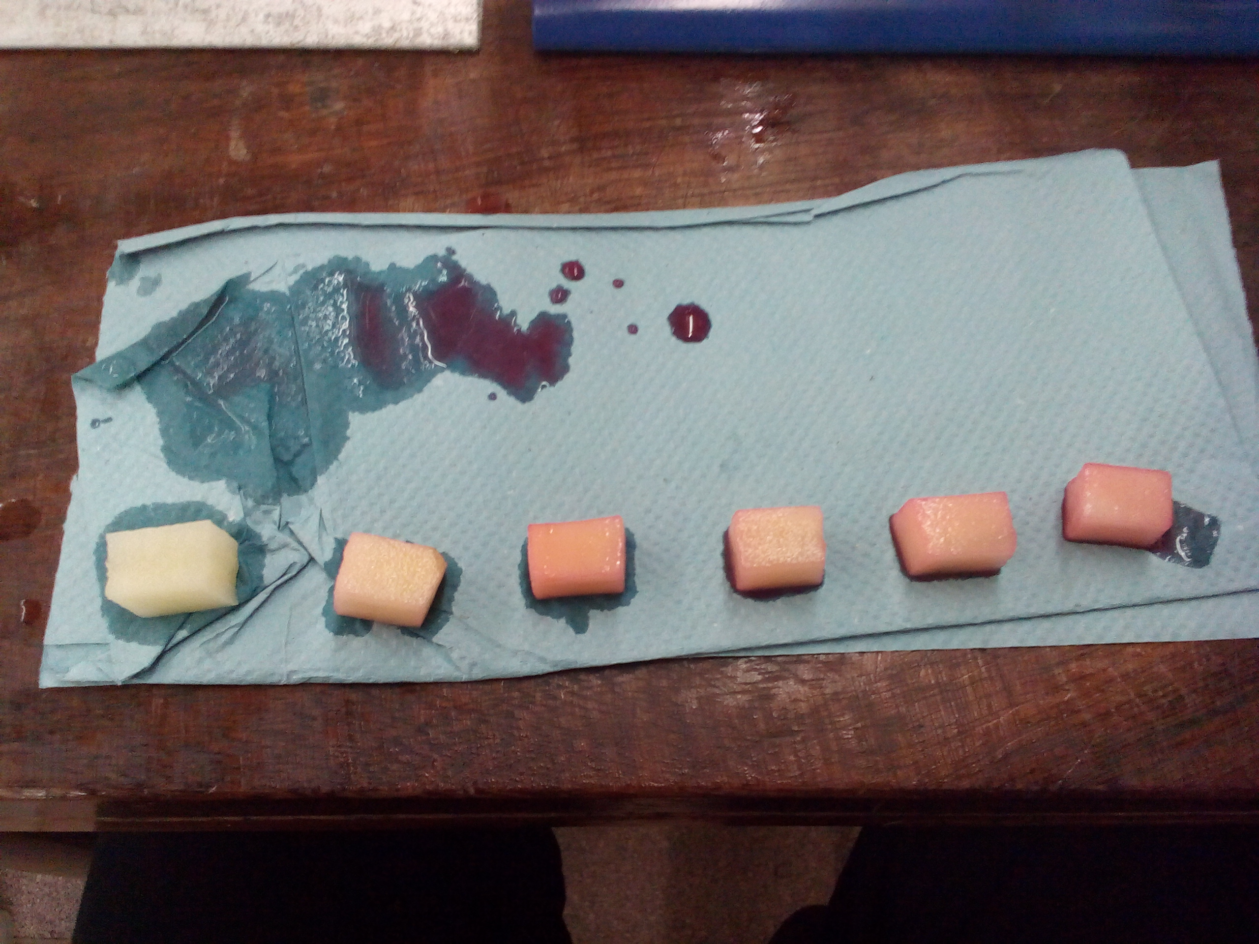 osmosis potato and blackcurrant squash Biology bio3t/p14/tn unit 3t as investigative skills assignment  the effect of concentration of blackcurrant squash on osmosis in potato cylinders  different concentrations of blackcurrant squash they will be provided with five concentrations of blackcurrant squash and potato cylinders the candidates will prepare the cylinders, weigh.